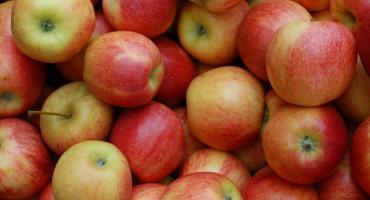 Prześwietlili rynek owoców