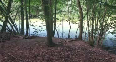 Rusinowski park zyska nowe oblicze