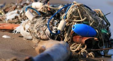 Morze oddało to co do niego nie należy