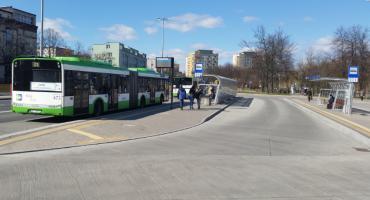 Białystok nie ma zielonych przystanków. Czy będzie je mieć?