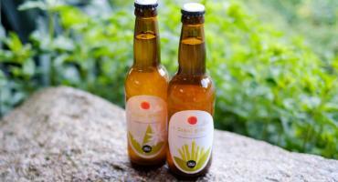 Do sushi spróbuj piwa z japońskiego chmielu