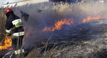 Znowu płonęły trawy. Tydzień pracy szczecineckich strażaków