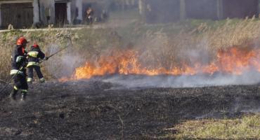Płonęły trawy, las, a w jednym z mieszkań wydobywał się czad