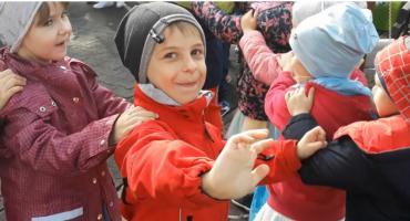 Przedszkolaki mają święto! Dzieci z Makusia radośnie bawiły się przy muzyce