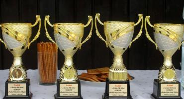 Puchar wójta dla Dobkowic