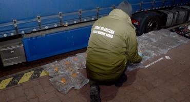 Próbował przemycić bursztyn o wartości 166 tys. zł