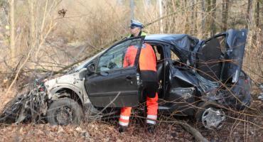 Jednaczewo: Peugeot roztrzaskał się o drzewo. Kobieta trafiła do szpitala [FOTO]