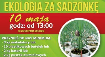 Łomża: Ekologia za sadzonkę