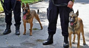 Łomża: Nowi czworonożni funkcjonariusze rozpoczęli służbę [FOTO]