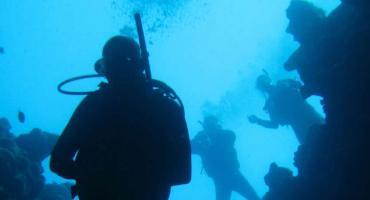 W muzeum o podwodnym świecie