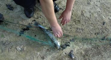 Na rybach nielegalnie i z narkotykami. Policja zatrzymała kłusowników