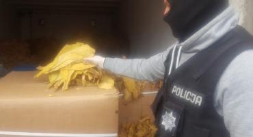 Policjanci przechwycili ponad trzy tony nielegalnego tytoniu [VIDEO]