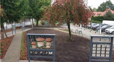 W Zespole Szkół nr 2 powstał park edukacyjny