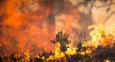 Pożar budynku jednorodzinnego w Głodowie