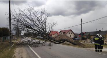 Silne wiatry i burza nad powiatem – interwencje straży pożarnej