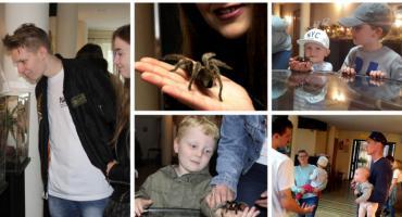 Żywe pająki i skorpiony w Garwolinie – zobacz i dotknij