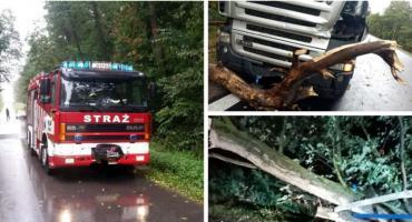 Silny wiatr połamał drzewa, uszkodził dachy i linie energetyczne