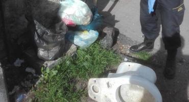 Podrzucali śmieci – zostali ukarani