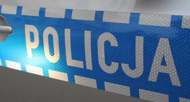 Informacja o narkotykach i policyjny pies w akcji