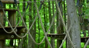 Park linowy otwarty