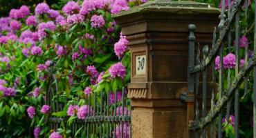 Planowanie ogrodzenia - niezbędne informacje