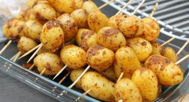 Czytelnicy Biblioteki wyruszą po pieczonego ziemniaka