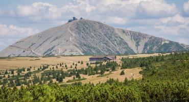 Przyroda Karkonoszy - ciekawostki z życia gór
