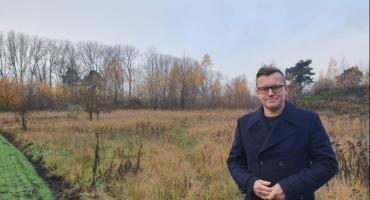 Dziki w Inowrocławiu