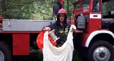 Nietypowa akcja strażaków