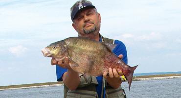 Łowienie z główek falochronów portowych