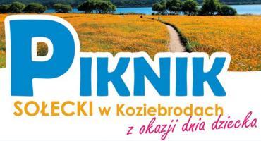 Piknik w Koziebrodach