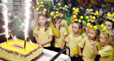 Pasowanie z pięcioma tortami na finał u Misia Uszatka