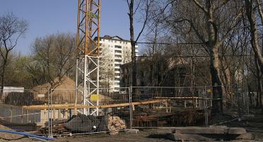 W ochronie drzew na Barszczewskiej