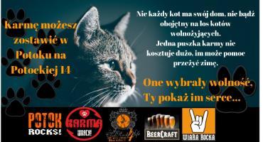 Kotom życzymy – smacznego!