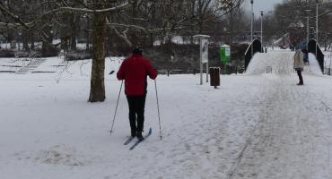 Kępa Potocka – dobre miejsce na zimowy spacer
