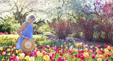 Meble do ogrodu - jak wybrać najlepsze?