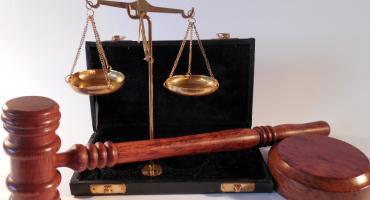 Kobieta, która zagłodziła krowy, usłyszała nieprawomocny wyrok sądu