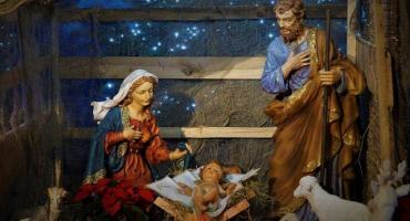 Andrzej Mioduszewski życzy zdrowych spokojnych i pełnych rodzinnego ciepła Świąt!