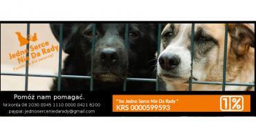 Przekaż 1% dla Fundacji Dla Zwierząt Jedno Serce Nie Da Rady