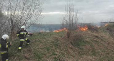 Sezon na wypalanie traw niestety trwa