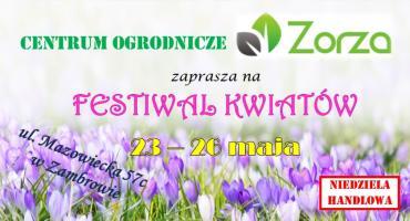 Rozpoczyna się Festiwal Kwiatów w Zambrowie!