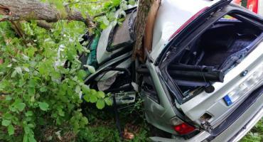 """Pijany wjechał w przydrożne drzewo. Samochód """"owinął się"""" wokół pnia [foto]"""