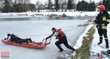 Strażacy na ratunek psom