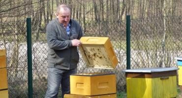 Bez pszczół nie będzie ludzi