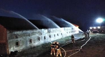 Kolejna akcja strażaków