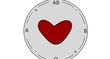 Otwarte akcje poboru krwi w 2019 roku - znamy harmonogram