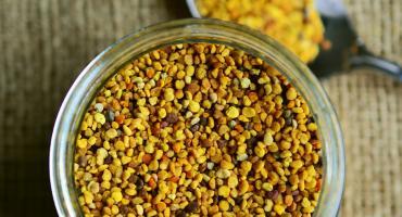 Zastosowanie pyłku pszczelego
