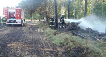 Najwyższy stopień zagrożenia pożarowego w lasach!