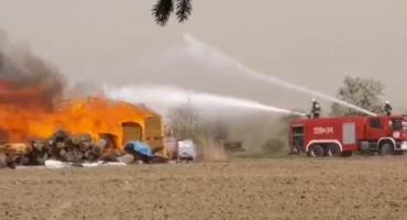 Strażacy z powiatu złotowskiego walczą z pożarem w gminie Miasteczko Krajeńskie