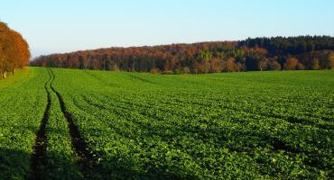 Największy sklep dla rolników i sadowników w Polsce